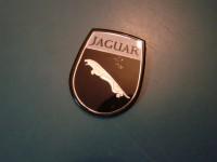 JAGUAR XJ6 STEMMA CRUSCOTTO DASH EMBLEM 69 75